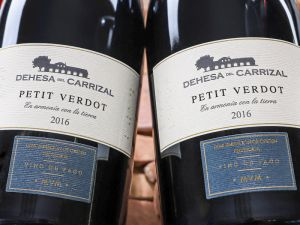 Dehesa del Carrizal - Petit Verdot 2016