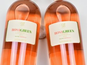 Pasini San Giovanni - Groppello 2019 Rosagreen Bio