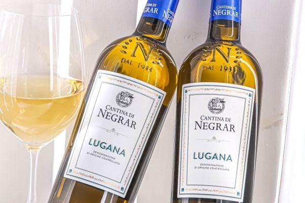 Cantina di Negrar - Lugana 2019