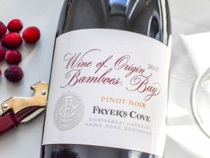 Fryer's Cove - Pinot Noir 2017 Bamboes Bay