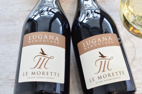 Le Morette - Lugana 2019 Mandolara